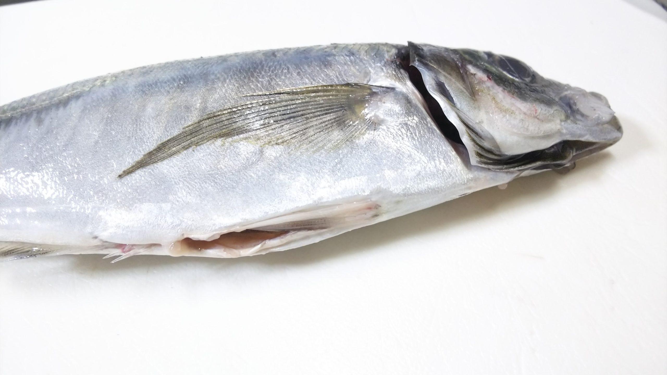 スーパーの魚の調理済みとは??
